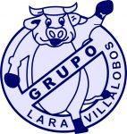 Grupo Lara Villalobos